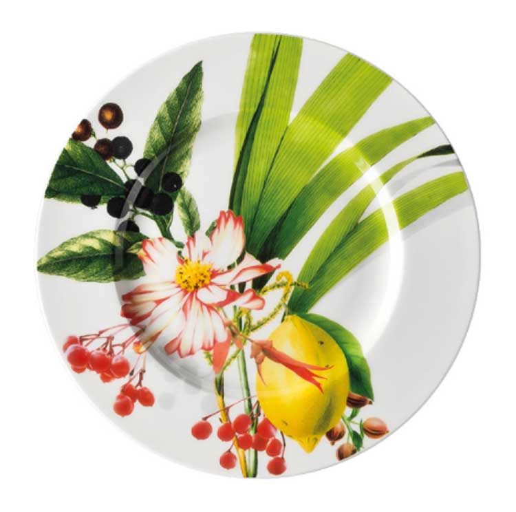Брилланс Набор тарелок Rosenthal 19 см. 6 шт.